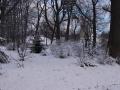 Powrót zimy 03.04.2015